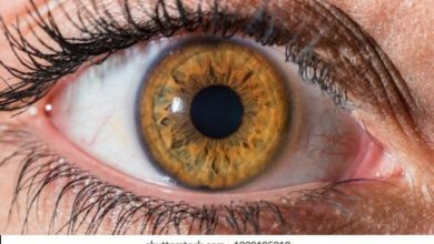 Photo of What Is The Cause Of Hazel Eyes