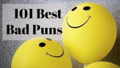 Photo of Puns That Are So Bad That They Are Really Funny
